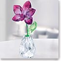 Swarovski Flower Dreams Orchid